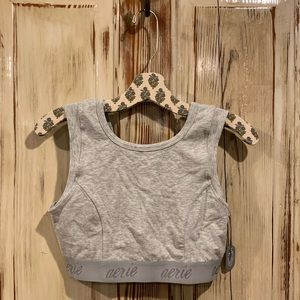 Aerie Chill Play Move high neck gray sports bra